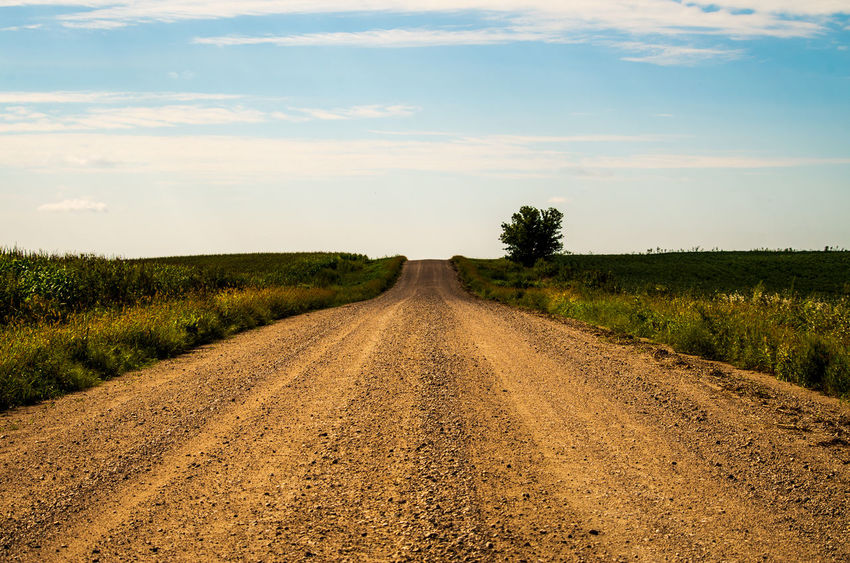 Cloud - Sky Diminishing Perspective Direction Dirt Dirt Road Environment Land Landscape Nature No People Non-urban Scene Outdoors Plant Road Sky The Way Forward Tranquil Scene Tranquility Transportation Tree vanishing point