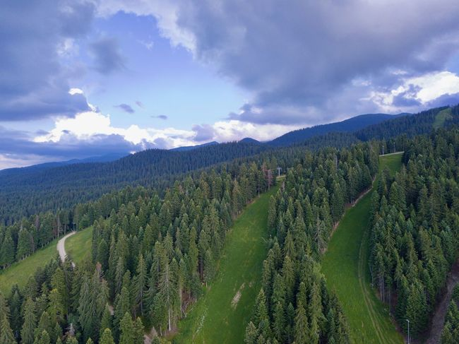 Drone  Beauty In Nature Cloud - Sky Coniferous Tree Day Dronephotography Droneshot Environment Forest Green Color Growth Idyllic Land Landscape Mountain Nature No People Non-urban Scene Outdoors Plant Scenics - Nature Sky Tranquil Scene Tranquility Tree