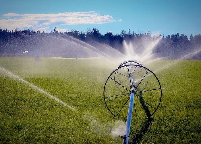 Irrigation Machine Watering Crop
