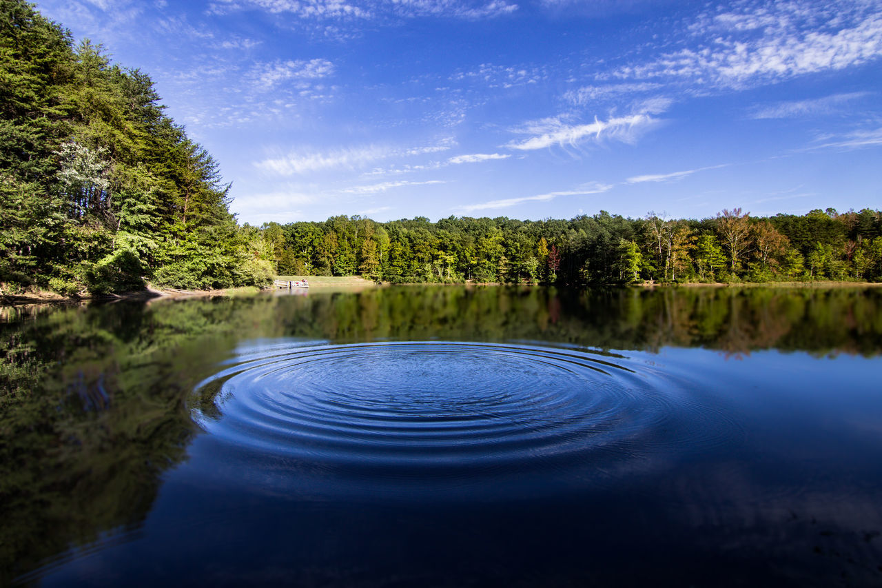 Scenic View Of Trees Reflection In Rippled Water Against Blue Sky