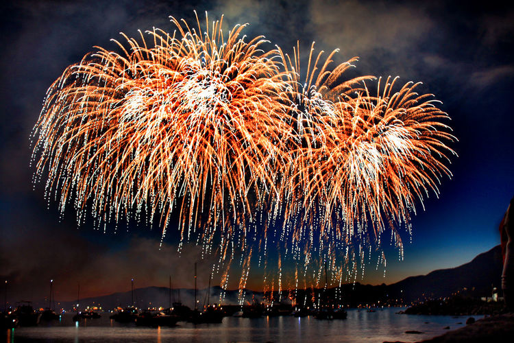 blooming fireworks Arts Culture And Entertainment Atmospheric Mood Beauty In Nature Blurred Motion Celebration Celebration, Festival, Night, Party, Celebrate, Fire, Light, Exploding Exposure Firework Firework Display Fountain Glowing Growth Illuminated Long Exposure Motion Night Palm Tree Plant Tropical Climate