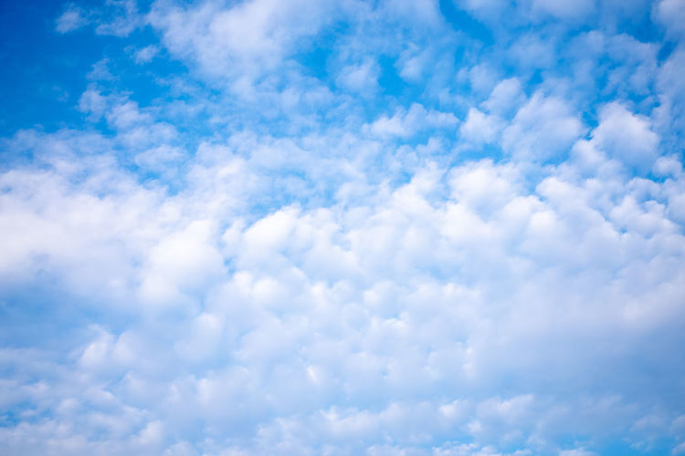 Cloud - Sky Sky Beauty In Nature Low Angle View No People Blue Tranquility Scenics - Nature Day Nature White Color Outdoors Tranquil Scene Backgrounds Full Frame Idyllic Cloudscape Fluffy Meteorology