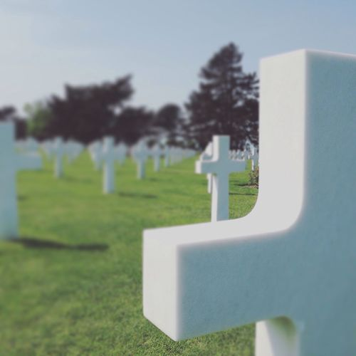 Focus Object American cimetery
