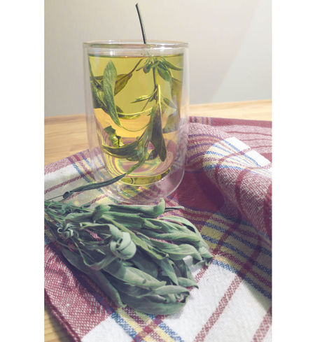 Sage. Bebida Country Life Drink Food And Drink Glass Indoors  InFusion Infusion Of Tea Infusion Pump Sage Still Life Table Tea Tea Time