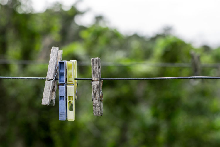 Close-up of clothesline hanging on rope