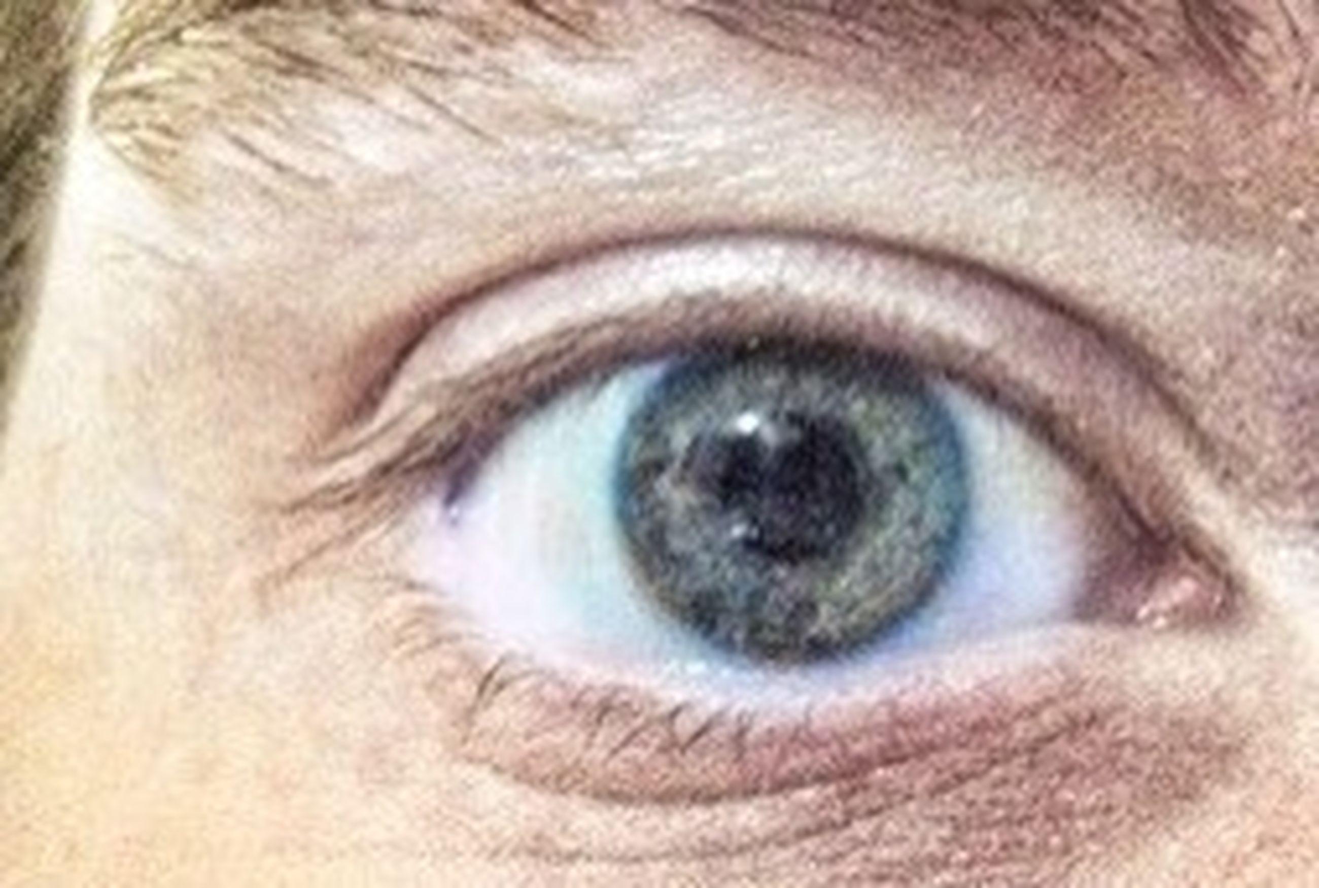 human eye, eyelash, close-up, eyesight, sensory perception, extreme close-up, part of, extreme close up, looking at camera, eyeball, portrait, indoors, iris - eye, human skin, full frame, pets, one animal
