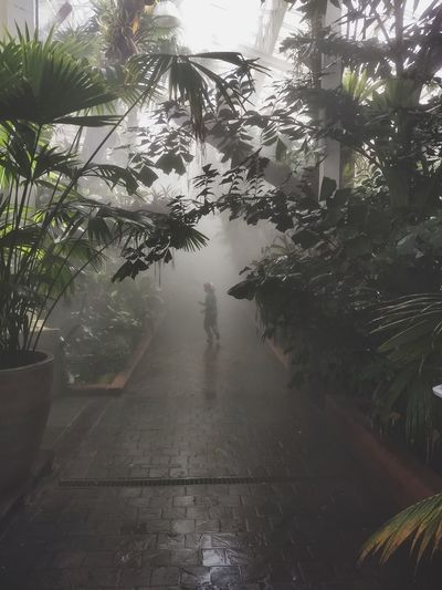 Man walking on wet footpath during rainy season
