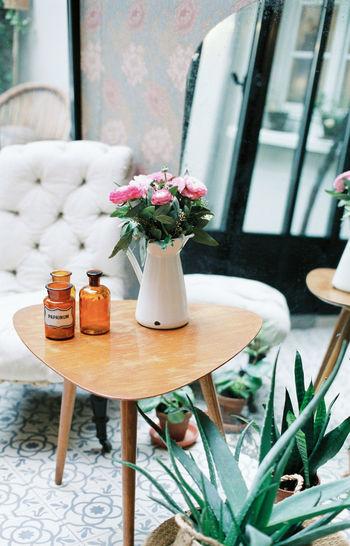 Gardening Decoration Florist Flower Flowers Garden Garden Photography Hotel Interior Interior