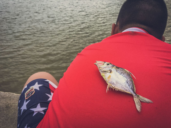 High angle view of dead fish on man back