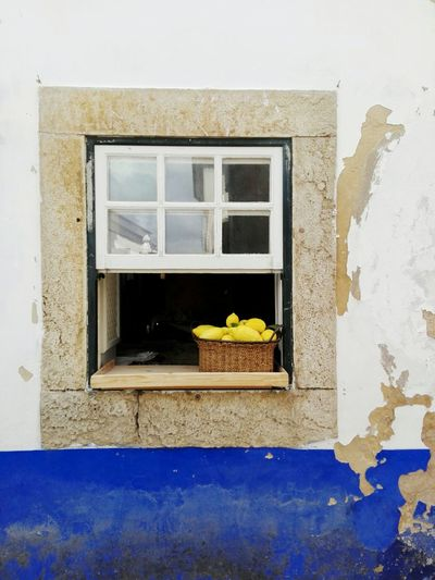 Cute little window Little Window Cute Obidos Portugal Lemons Rustic Beauty Photography Huawei Rusitc Old Buildings Peeling Paint Nofilter White And Blue