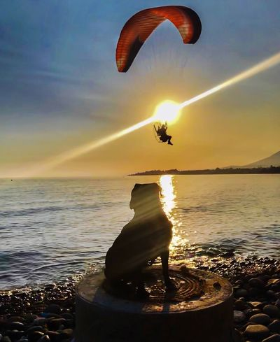 Fly like an eagle into the sea Sea Sunset Extreme Sports Horizon Over Water Beauty In Nature Paragliding Outdoors Dog Photography IPhoneography Silhouette Moments Check This Out