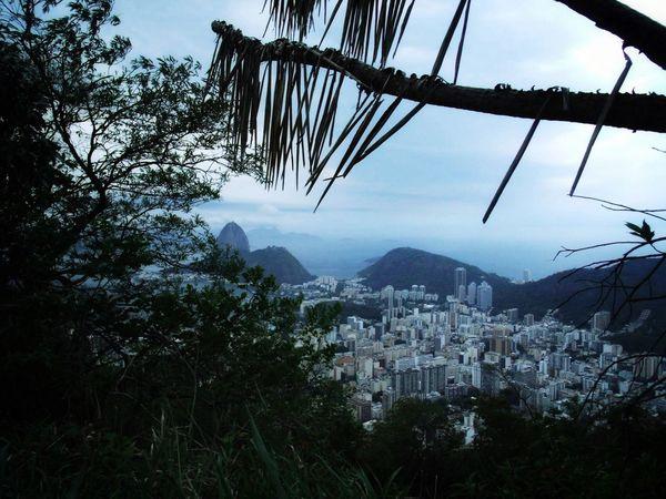 EyeEmNewHere Rio De Janeiro Eyeem Fotos Collection⛵ Tree Mountain Travel Photography Travellover Rio De Janeiro Brasil Tijuca's Forest Brazil Nature Cityscape Lost In The Landscape Go Higher