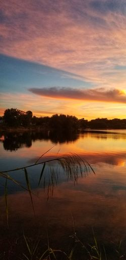 Impossibly beautiful life..... Water Tree Sunset Lake Multi Colored Red Reflection Autumn Dawn Beauty Reflection Lake Reed - Grass Family