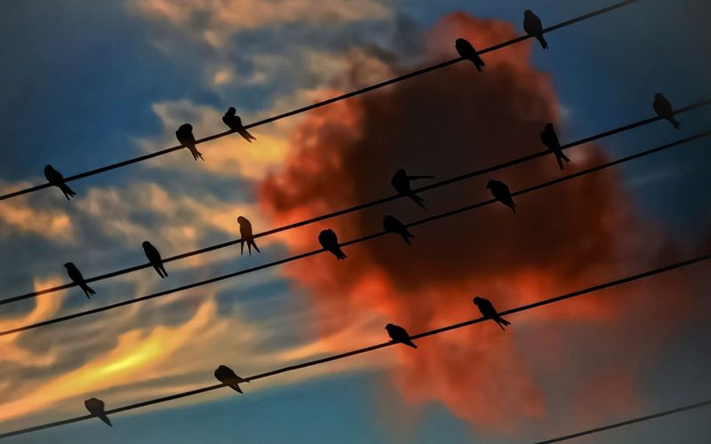 Cloud - Sky Sky No People Silhouette Chainlink Fence Sunset Moon Heat - Temperature Smoke - Physical Structure Outdoors Illuminated Nature Beauty In Nature