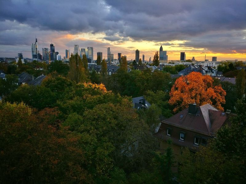 Autumn Skyline Cityscape Skyscraper Sunset No People Urban Skyline Outdoors Cloud - Sky City Architecture Frankfurt Frankfurt Am Main Frankfurt City  Frankfurtammain Skyline Frankfurt Skyline Sunset_collection Autumn Autumn Colors Sunsets Sundown Skyscrapers Landscape Landscape_Collection Cityscape Photography Cityscapes