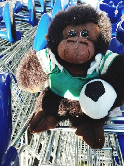 Consumerism Consumption  Consumikaze Soccer For Sale Shopping Carts Shopping Cart Consumism Lost In Consumism Soccer Is Lost Childhood Stuffed Toy Store Close-up Toy Animal Teddy Bear Supermarket Toy Animal Representation For Sale Market Push Cart World Cup 2018