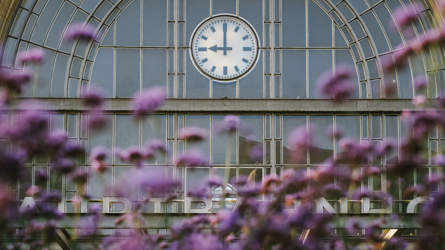 Trainstation time clock flowers railway