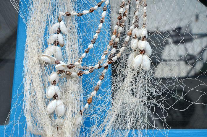 Full Frame Textured  Backgrounds Beach Shell Shells Net Blue White Decoration Pebble Pebbles Shells🐚