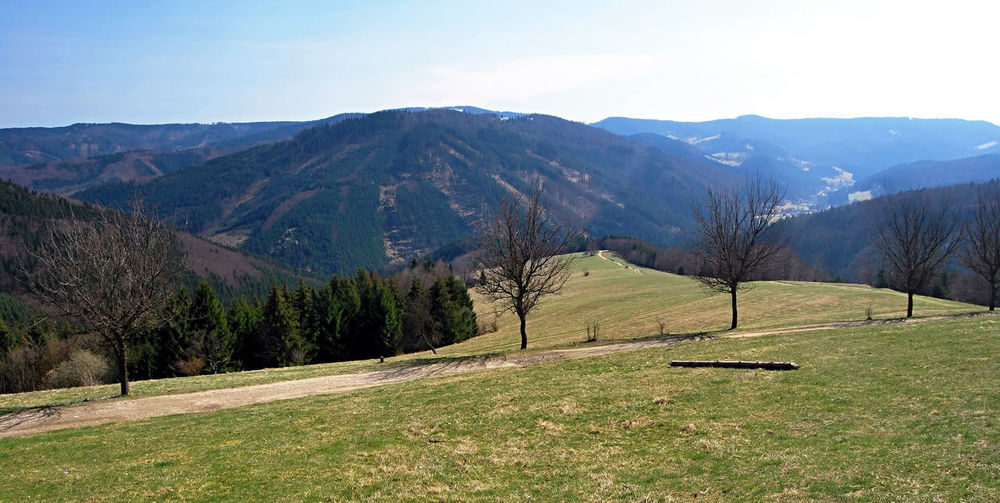 spring Moravskoslezske Beskydy mountains near Kamenity chalet above Horni Lomna village in Czech republic with meadow, trail, few trees, hills and blue sky Carpathian Mountains Czech Republic Horni Lomna Moravskoslezske Beskydy Beauty In Nature Blue Sky Environment Grass Green Color Idyllic Landscape Meadow Mountain Mountain Range Nature Outdoors Scenics - Nature Spring Springtime Tranquil Scene Tree