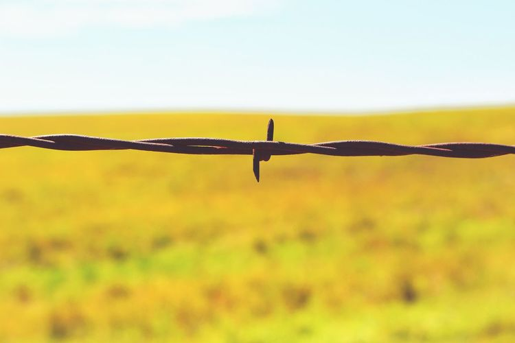 Barbed Wire On Grassy Field Against Sky