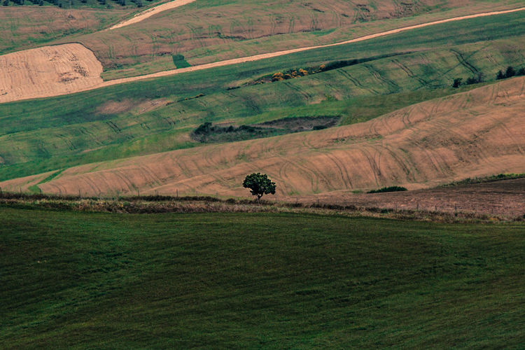 Landscape in Tuscany. Beauty In Nature Coutryside Green Green Color Hill Hills Hillside Italy Landscape Landscapes With WhiteWall Nature Scenics Silence Silent Moment Solitude Tranquil Scene Tranquility Tree Tuscany Tuscany Countryside Val'd Orcia Showcase April