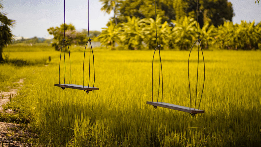 Empty swings over grassy field against trees