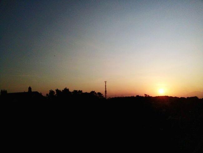 sunrise Sunrise Tree Astronomy Silhouette Sky Landscape