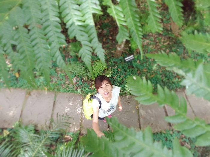 High angle view of woman standing on footpath amidst plants