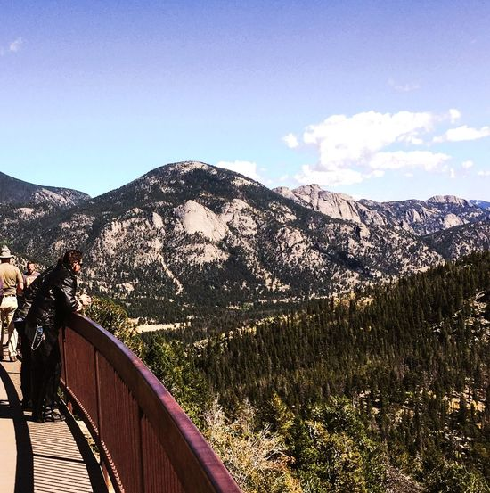 What a view! Rocky Mountain National Park. Mountain Mountain Range Railing Nature Beauty In Nature Scenics EyeEmNewHere Tree Day Tranquility Landscape Sky Tranquil Scene Outdoors Cloud - Sky The Traveler - 2018 EyeEm Awards