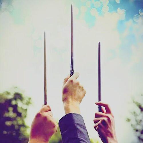 harry potter ⚡ Magic Wands ?