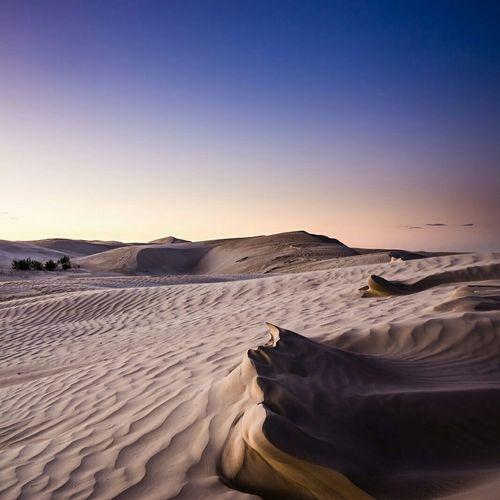 Desert Taking Photos Ampimages Desert Australia
