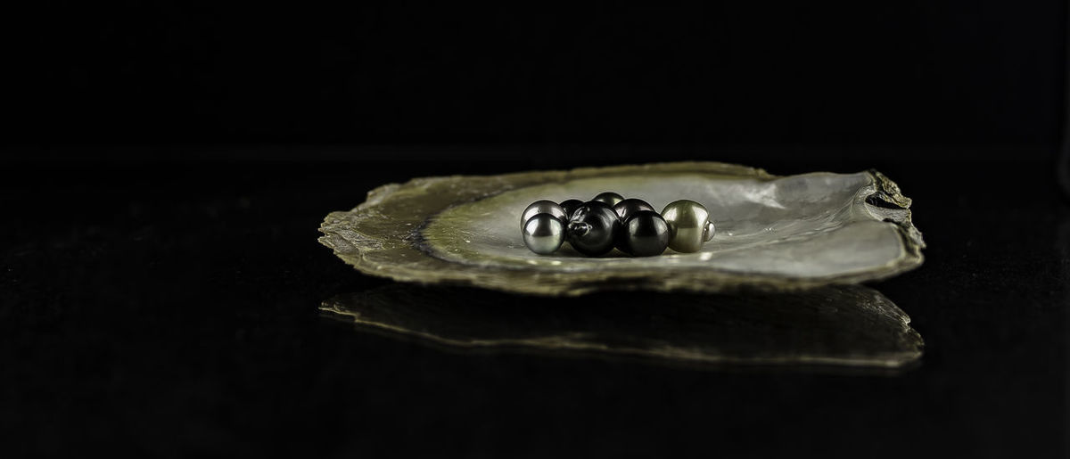 Close-up of pearls on oyster shell against black background