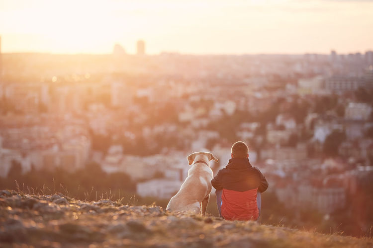 Rear view of young man with dog at sunrise. pet owner sitting with his dog on hill against city.