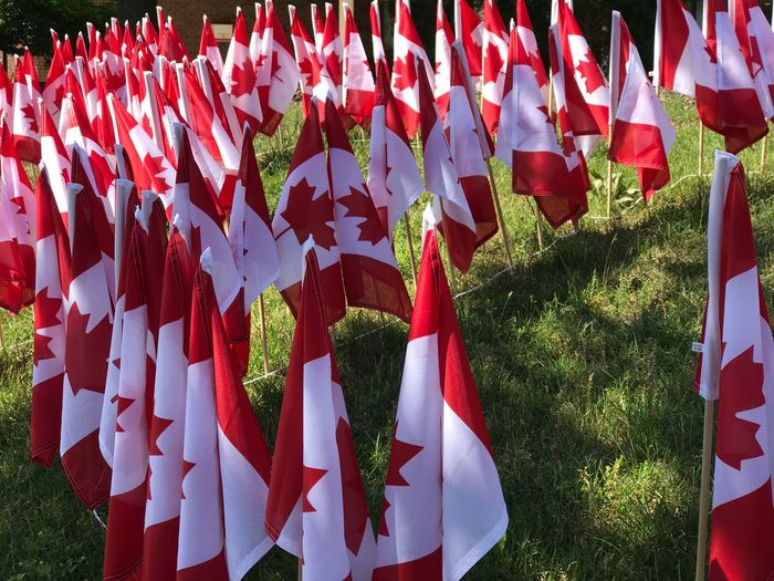 Close-Up Of Canadian Flag On Field