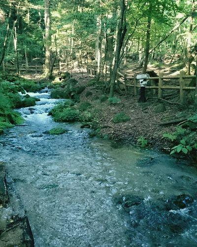 川 Enjoying Life Japanese  River Riverside お出掛け
