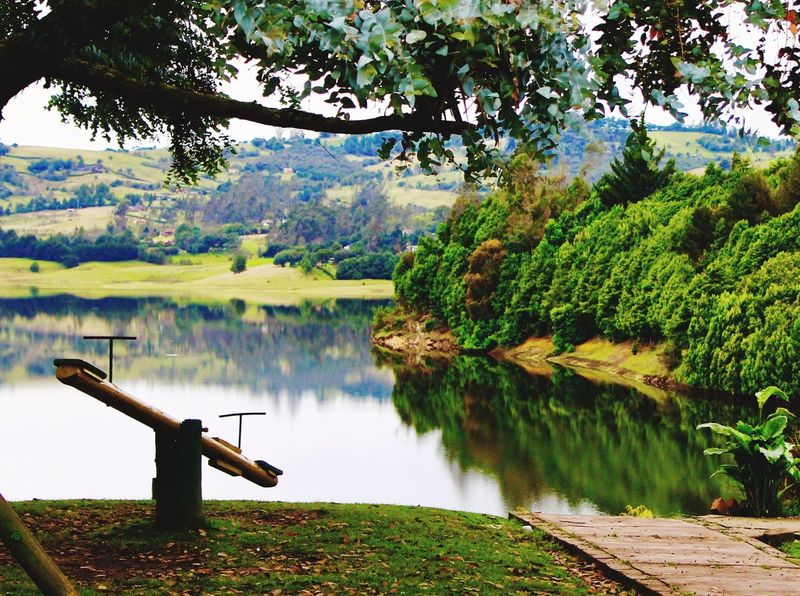 Water Tree Plant Lake Beauty In Nature Tranquility Scenics - Nature Reflection Green Color Mountain