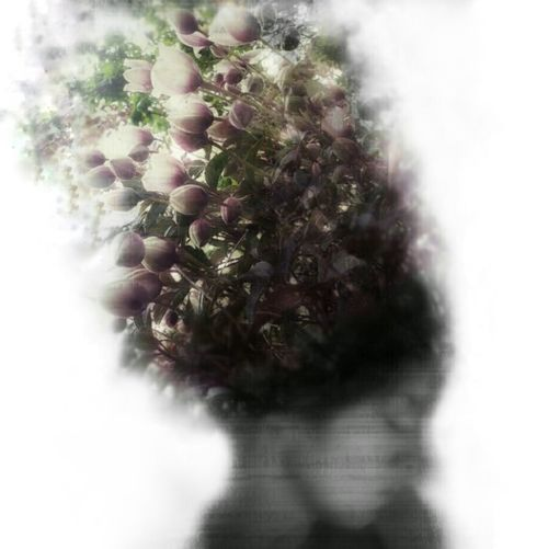 Double Exposure Edit Edited Edited Photos Doubleexposure Flowers Nature Dreaming Dreamy Photo Editing Cool Edit Beautiful Self Portrait Lady Woman Woman Portrait Person Black And White Colour Splash