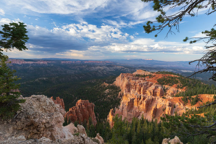the overwhelming Bryce Canyon Rock Rock - Object Non-urban Scene Nature Beauty In Nature Travel Destinations Scenics - Nature Tranquility Tranquil Scene Outdoors Eroded Formation Bryce Canyon Utah National Park Cloud - Sky Sky Plant Mountain Tree Landscape Environment Solid Travel Mountain Peak