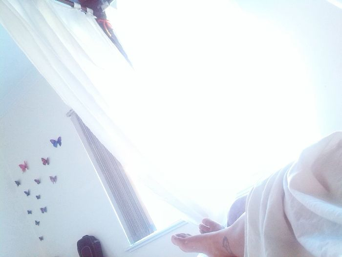 lovely way to wake up :) sigh* InBed Good Morning Perfectmorning Lazydays