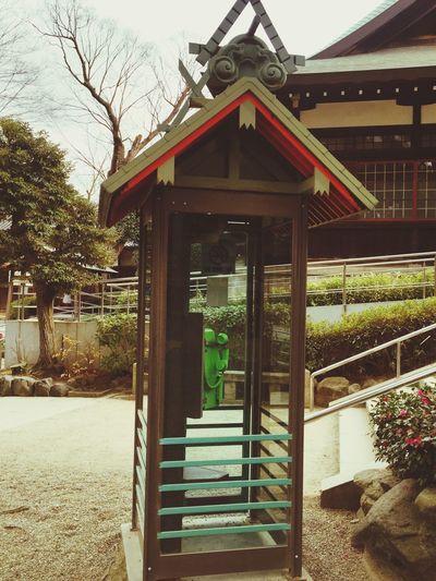 神社仕様の公衆電話。神様に繋がるといいのに😅⛩☎️ 住吉大社 大阪 Osaka,Japan Sumiyoshitaisha Phone Box Shrine Box Phone Public Phone