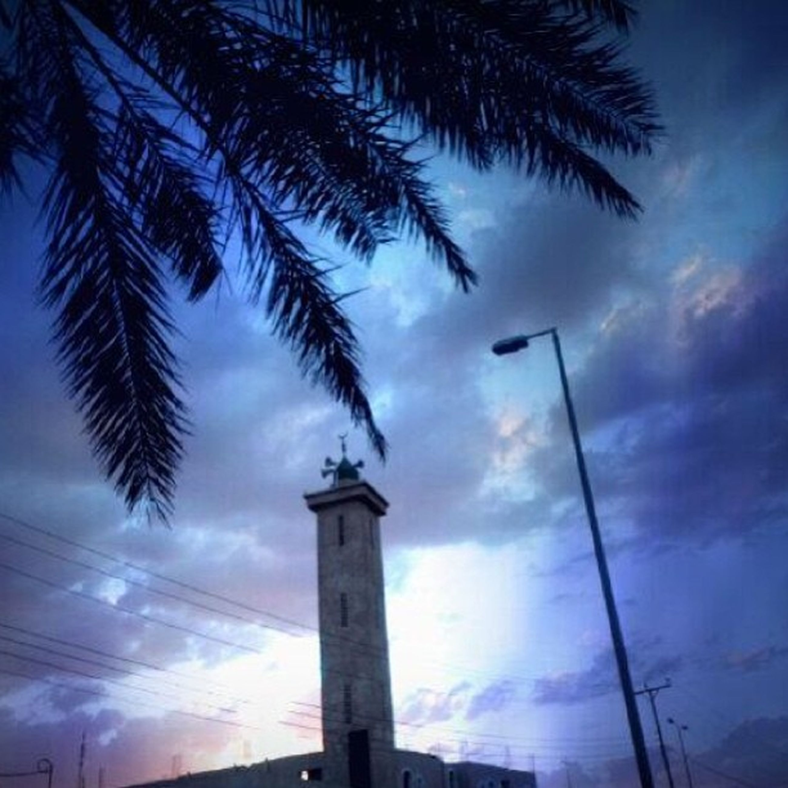 low angle view, sky, cloud - sky, built structure, street light, architecture, palm tree, cloudy, tree, cloud, building exterior, silhouette, lighting equipment, tall - high, pole, no people, outdoors, day, tower, dusk