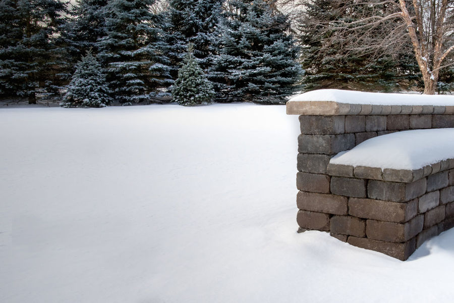 snowy backyard scene, stone bench covered in snow Bench Beauty In Nature Cold Temperature Day Fir Trees Frozen Landscape Nature No People Outdoors Scenics Snow Snow Covered Trees Snowdrift Spruce Tree Stone Bench Tranquil Scene Tranquility Tree Warm Clothing White Background White Color Winter