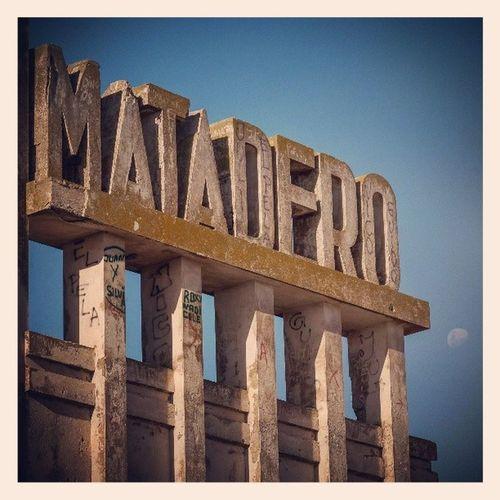 """...MATADEROs blues, para vo...oos, Chuchi!..."" Epecuen Matadero MemphisLaBlusera MataderosBlues"