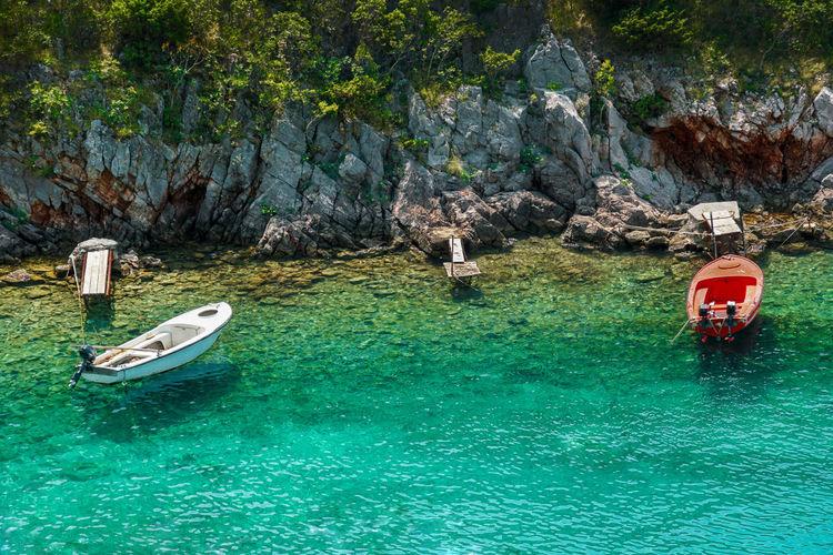 Boat on sea shore against trees