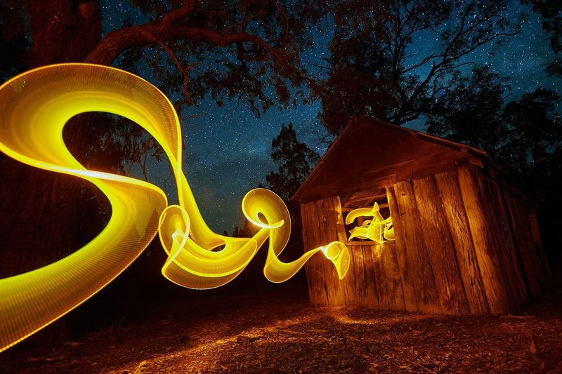 Yellow light painting by trees at night