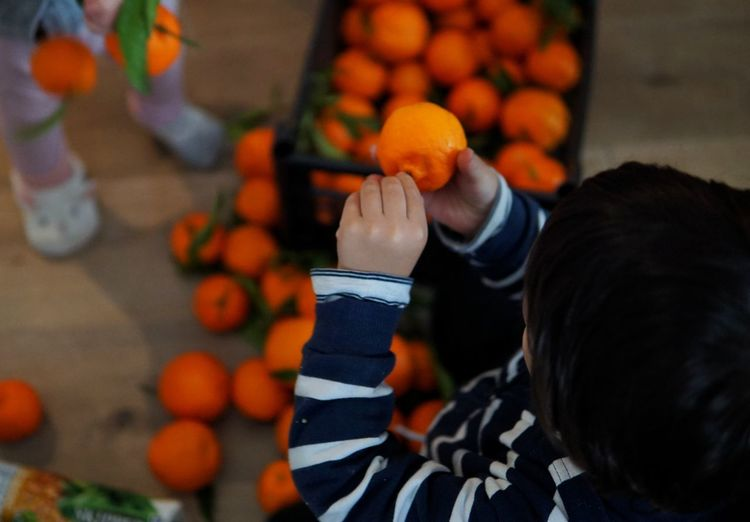 High angle view of girl holding oranges