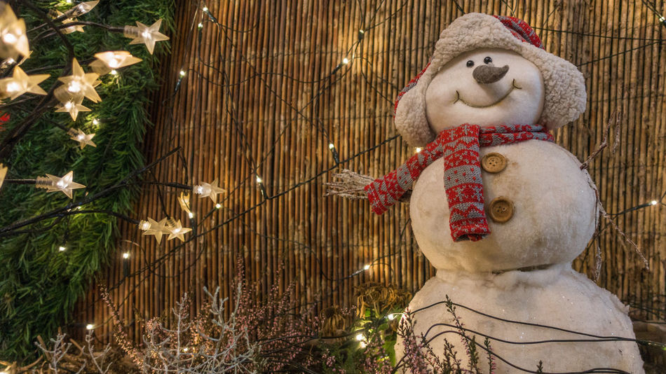 Smiling white glittering snowman with red scarf and warming cap and decoration with fairy lights Bliss Cap Christmas Christmas Decoration Cosiness Craft Work Decorative Fairy Lights Fir Glitter Handwork Heart Light Chain Reed Scarf Sensuality Photo Smile Snowman Star Treat Twig Very Close Warmth Winter Xmas