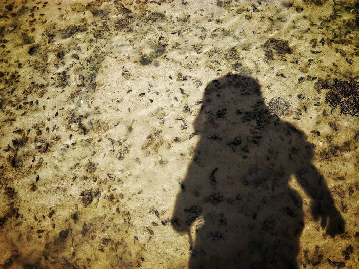 Focus On Shadow Sunlight Day One Person Outdoors Standing People EyeEmNewHere Rocky Beach One Man Only Water