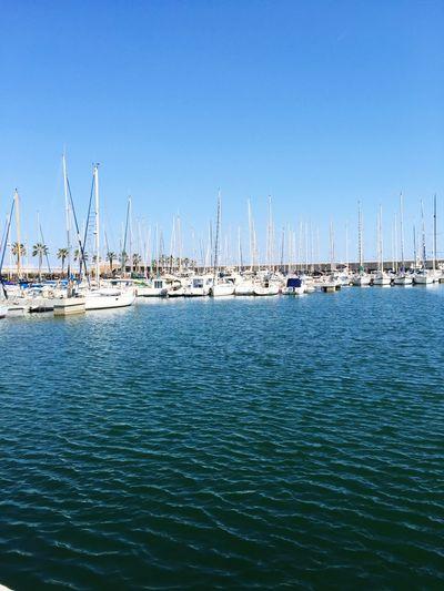 La marina Water Harbor Sailboat Yacht