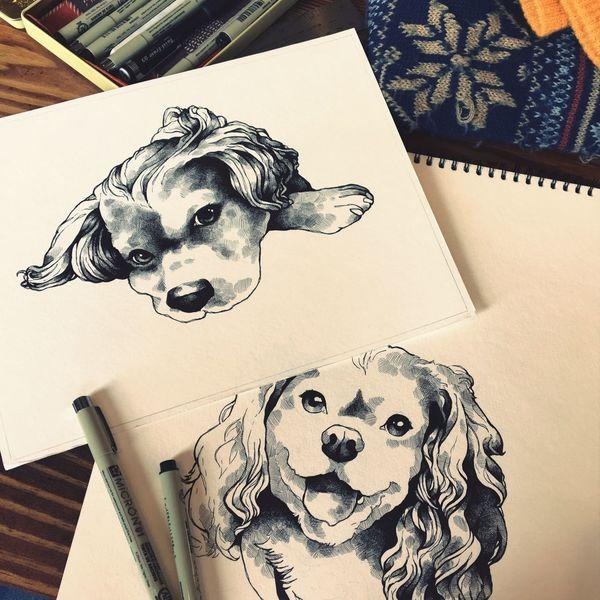 Animal Representation Dog Indoors  Pets Domestic Animals Animal Themes No People